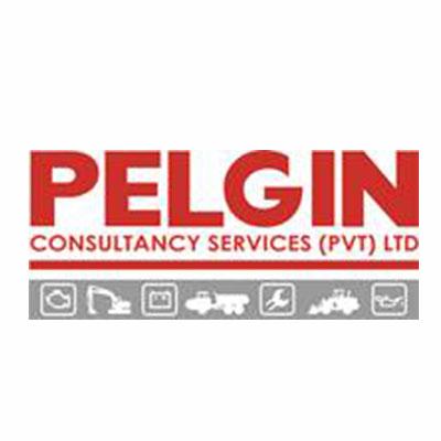 PELGIN CONSULTANCY